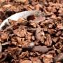 Cocoa Nibs 3